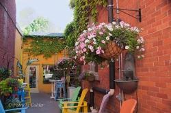 Cobourg-ON-PatriciaCalder-2014-30