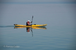 Cobourg-ON-PatriciaCalder-2014-49
