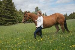 Horses-PatriciaCalder-37