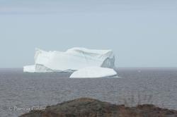 Icebergs-PatriciaCalder-2014-01