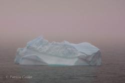 Icebergs-PatriciaCalder-2014-03