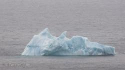 Icebergs-PatriciaCalder-2014-04
