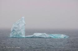 Icebergs-PatriciaCalder-2014-07