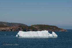 Icebergs-PatriciaCalder-2014-08