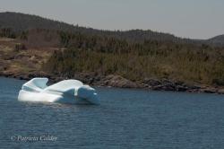 Icebergs-PatriciaCalder-2014-09