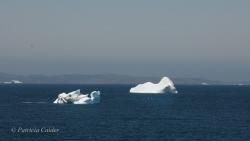 Icebergs-PatriciaCalder-2014-10
