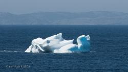 Icebergs-PatriciaCalder-2014-11