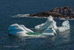 Icebergs-PatriciaCalder-2014-14