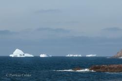 Icebergs-PatriciaCalder-2014-17