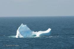 Icebergs-PatriciaCalder-2014-18
