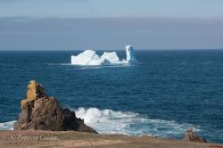 Icebergs-PatriciaCalder-2014-20