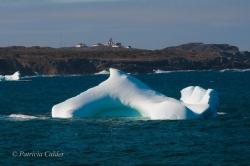 Icebergs-PatriciaCalder-2014-21