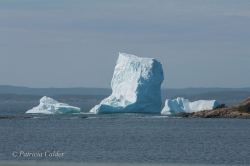 Icebergs-PatriciaCalder-2014-22