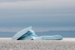 Icebergs-PatriciaCalder-2014-25