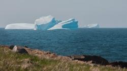 Icebergs-PatriciaCalder-2014-26