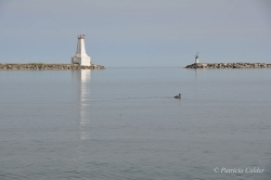 Lighthouses-PatriciaCalder-58