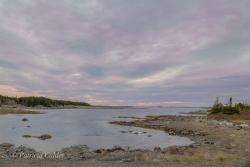 Newfoundland-PatriciaCalder-12