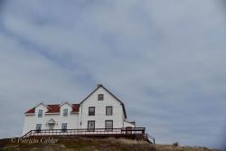 Newfoundland-PatriciaCalder-19