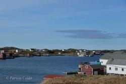 Newfoundland-PatriciaCalder-22