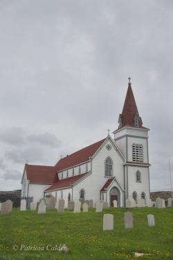 Newfoundland-PatriciaCalder-31
