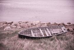 Newfoundland-PatriciaCalder-36