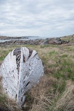Newfoundland-PatriciaCalder-42