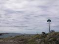 Newfoundland-PatriciaCalder-43