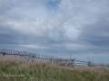 Newfoundland-PatriciaCalder-44