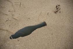 Sable-Island-PatriciaCalder-19