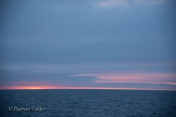 Sable-Island-PatriciaCalder-28